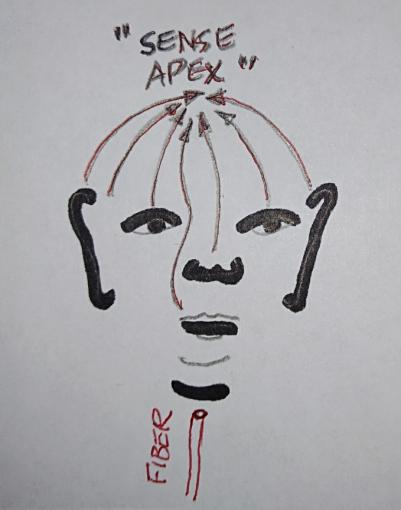 Sense Apex